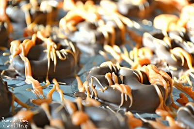 Chocolate Orange Pretzels are a quick and easy snack that will satisfy your cravings. Chocolate and orange marry in this perfect sweet and salty combination sure to please everyone.
