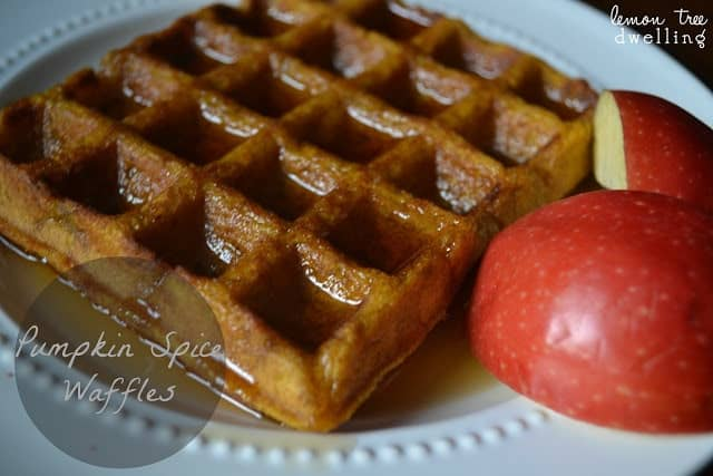 Pumpkin Spice Waffles are sure to please your family for breakfast.