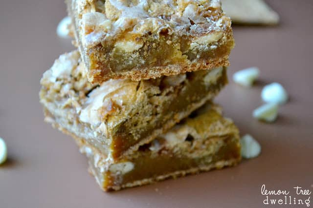Cinnamon S'more Blondies don't need any campfire to enjoy! These chewy blondies will have you dreaming of summer! Delicious for any occasion or celebration