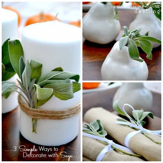 My 3 simple ways to decorate with Sage this year! Gather some fresh sage and try these simple ideas for holiday decorating. Ready in seconds...and the perfect way to dress up your holiday table!