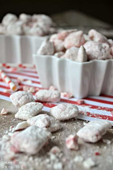 Candy Cane Muddy Buddies are a sweet and crunchy mint treat sure to please everyone over the holidays! Chocolate and Mint - It's pure peppermint perfection!Candy Cane Muddy Buddies are a sweet and crunchy mint treat sure to please everyone over the holidays! Chocolate and Mint - It's pure peppermint perfection!