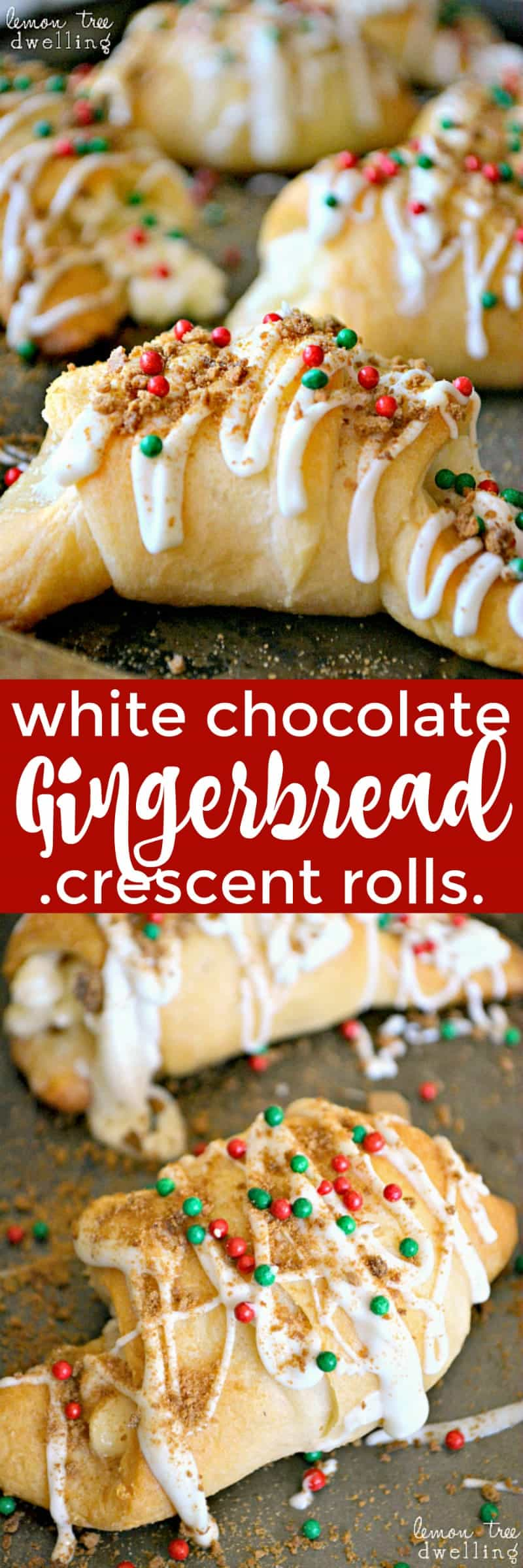 White Chocolate Gingerbread Crescent Rolls are a 5-minute decadent breakfast roll. Chocolate, cream cheese, gingersnap. A perfect holiday breakfast treat!