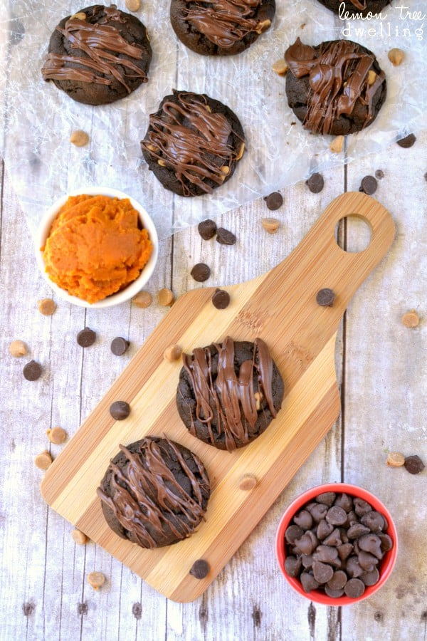Soft Batch Pumpkin Chocolate Cake Mix Cookies. Oven-ready in 5 minutes or less!