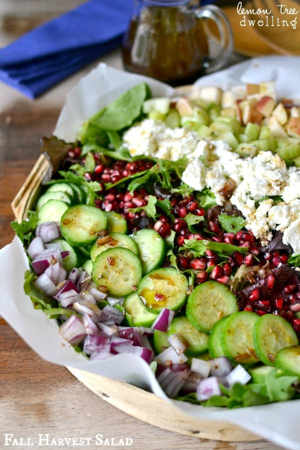 Fall Harvest Salad - made with mixed greens, apples, cucumbers, celery, red onion, feta cheese, and pomegranate seeds, and drizzled with a honey balsamic vinaigrette. A beautiful, delicious salad that's perfect for the holidays!