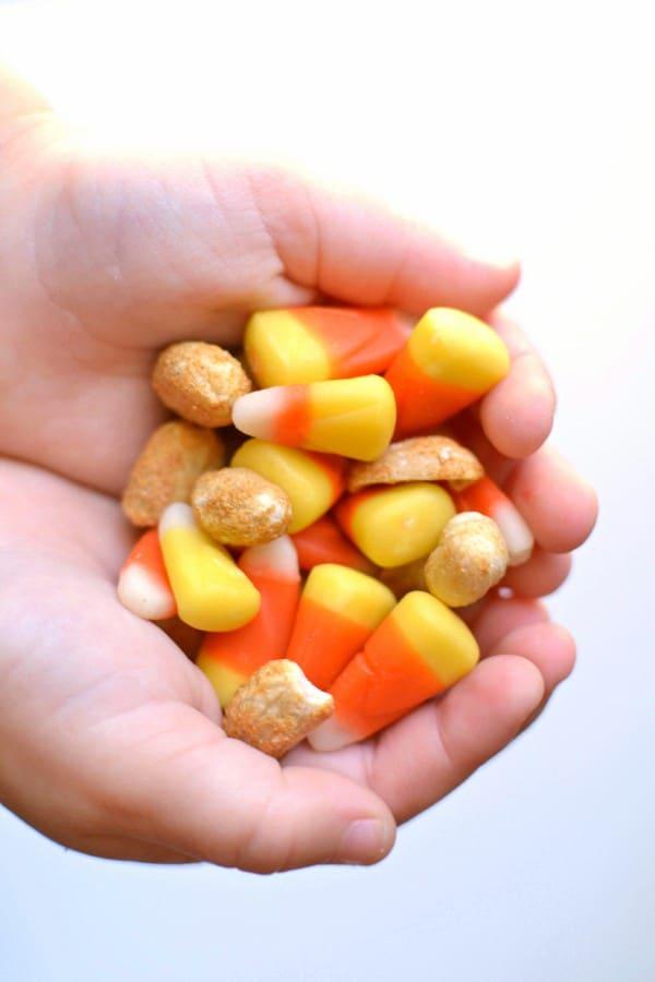 Sweet 'n Salty Candy Corn Frosty