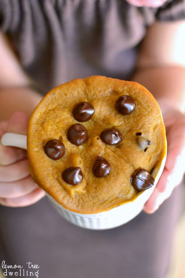 Pumpkin Chocolate Chip Mug Cake - 6 ingredients and 2 minutes to perfection!