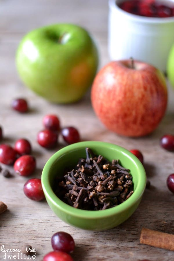 Spiced Cranberry Apple Cider, is a perfect blend of all the tastes of winter. This quick and easy hot drink is made in a slow cooker and makes for a wonderful holiday drink.