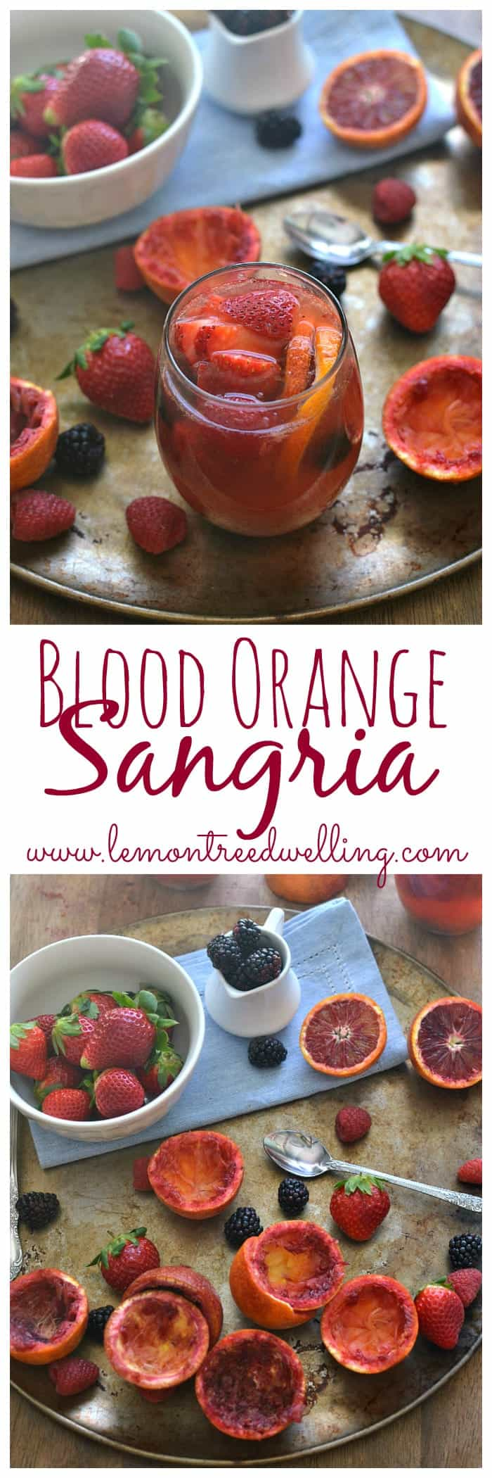 This Blood Orange Sangria is made with white wine, rum, and triple sec and garnished with fresh berries