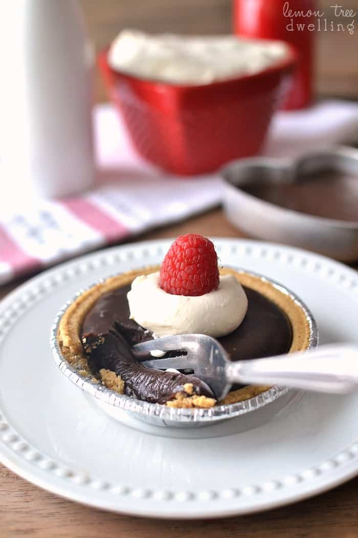 Chocolate Ganache Tarts - a simple recipe that's SO decadent!!