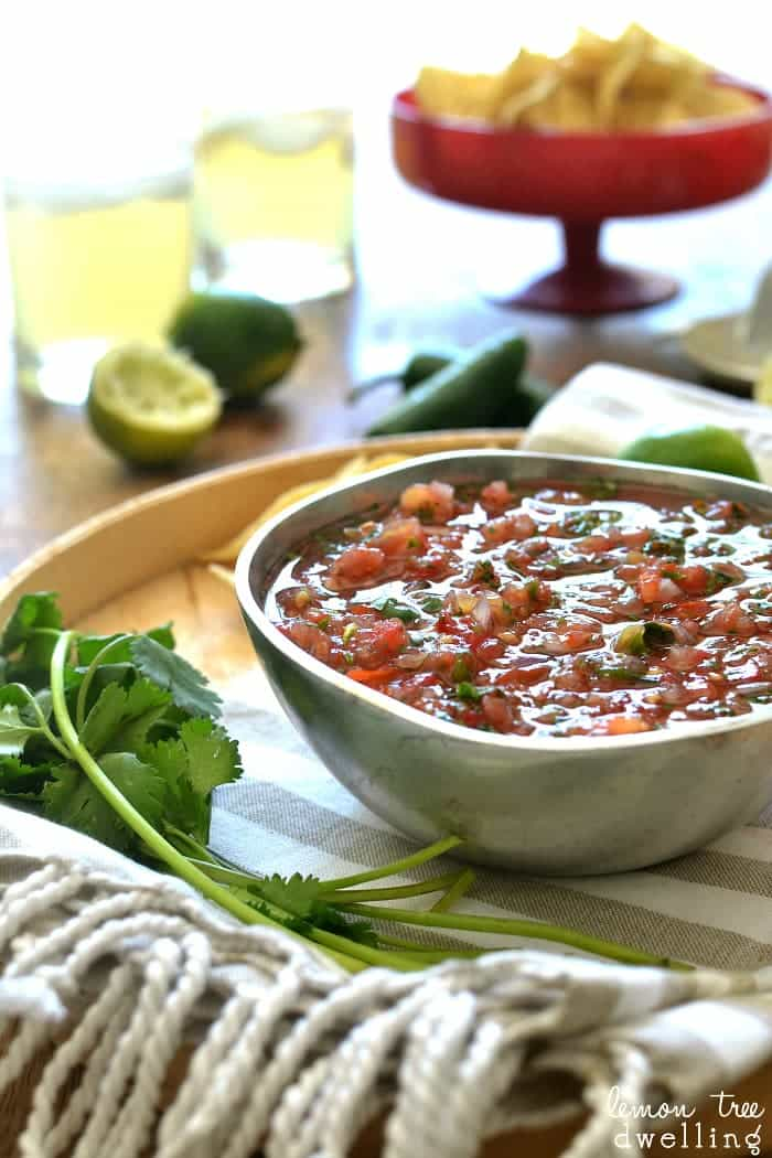 The BEST Blender Salsa! Comes together in minutes - no more chopping!!!