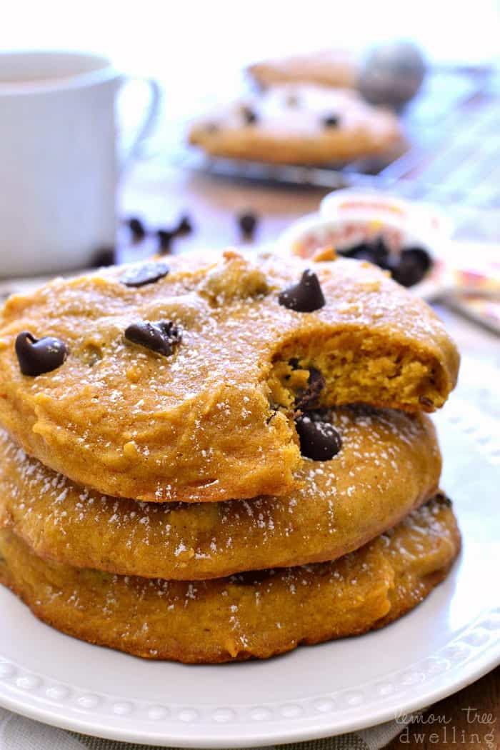 Soft, pillowy Pumpkin Chocolate Chip Muffin Tops. Perfect for breakfast, snack, or even dessert!