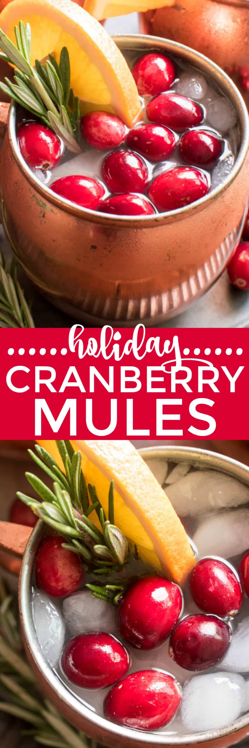 If you love Moscow Mules, these Holiday Cranberry Mules are sure to be a hit! Loaded with the delicious flavors of cranberry, orange, and ginger, and garnished with a sprig of fresh rosemary, these Mules are the perfect cocktails for your holiday season. And they're not only delicious, but beautiful, too! Which makes them an obvious addition to your Thanksgiving, Christmas, and New Years Eve menu. Best of all, these drinks come together quickly with just a handful of simple ingredients....and they can be pre-mixed for easy entertaining. If you're looking for a new go-to beverage this holiday season, look no further. These Holiday Cranberry Mules are IT!